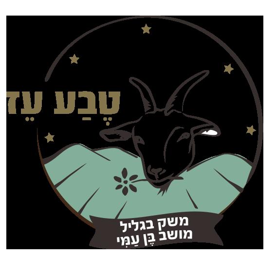 לוגו חדש2